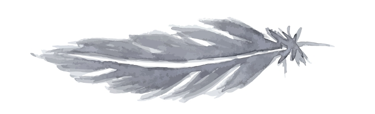 gray feather watercolor